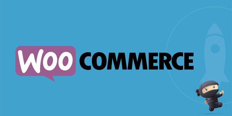 Woocommerce- Ecommerce ওয়েবসাইটের জন্য সেরা ৫টি WordPress Plugin এর তুলনা